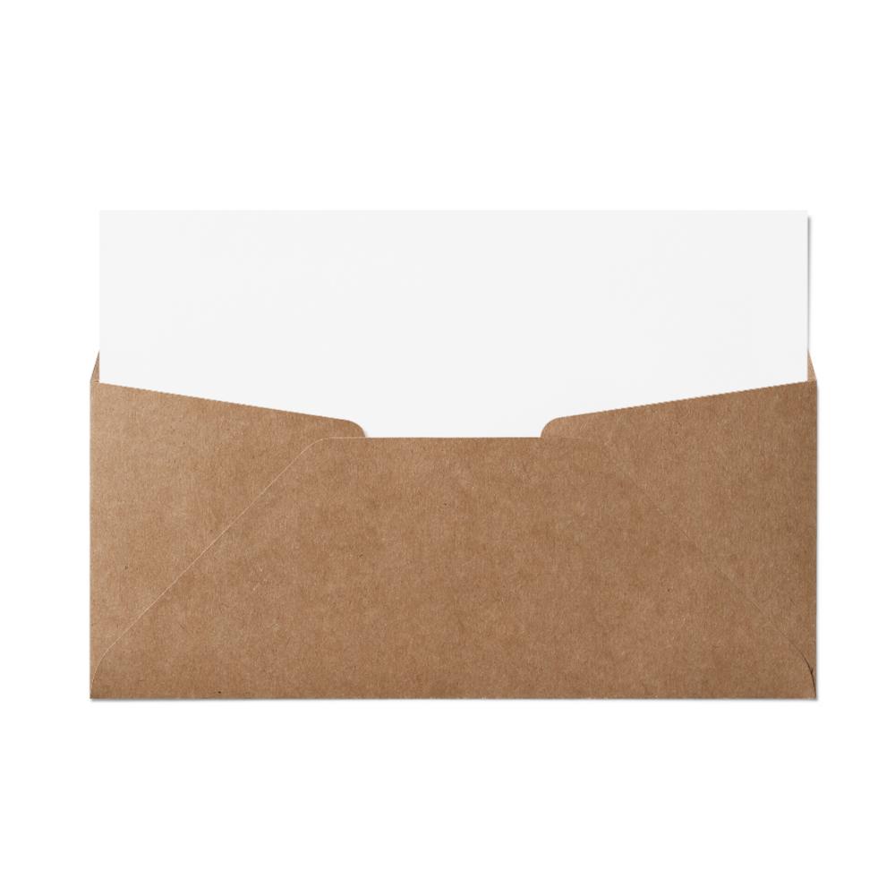 Regular #10 Envelope (105x241mm) Kraft