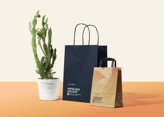 Paper Shopping Bag Mockup Scene